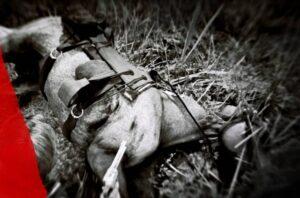 Red Dead Redemption 2 - Comment ranimer ressusciter un cheval mort