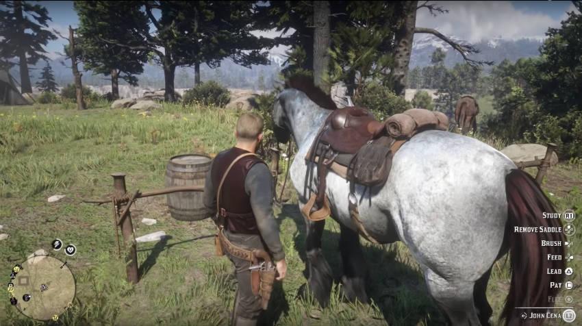 Red Dead Redemption 2 Dressage Guide - entretien cheval